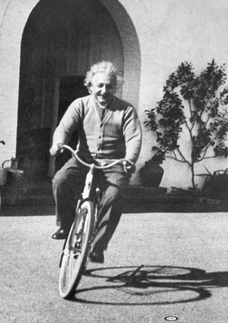 bicycle-albert